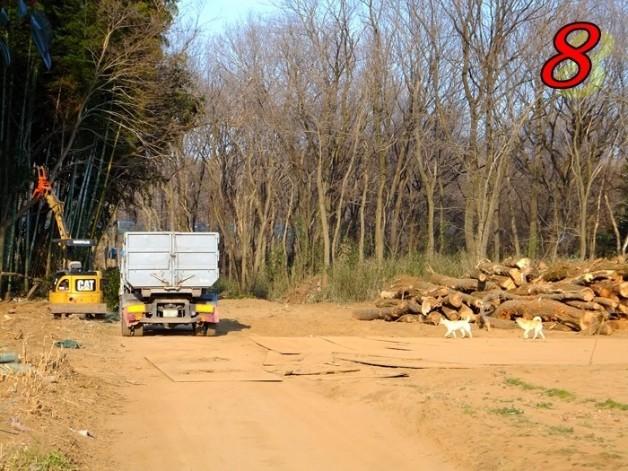 坂東パーキングエリア建設予定地の伐採