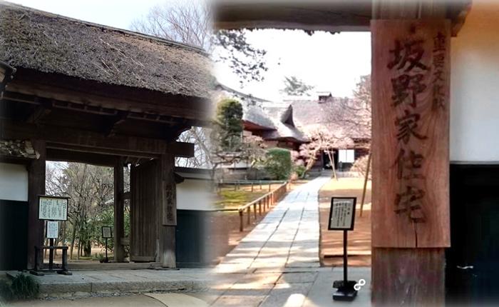 坂野家住宅:茨城県常総市の観光名所に行った感想※動画あり※