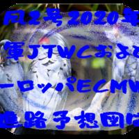 台風2号2020米軍JTWCとヨーロッパECMWFの進路予想図