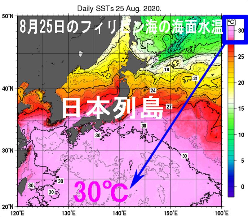 令和2年8月25日の日別海面水温