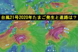 台風21号たまご2020Windy