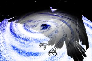 2021台風2号スリゲたまご発生